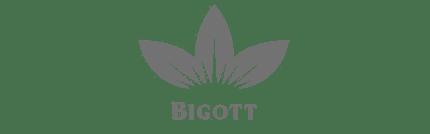 bigott1